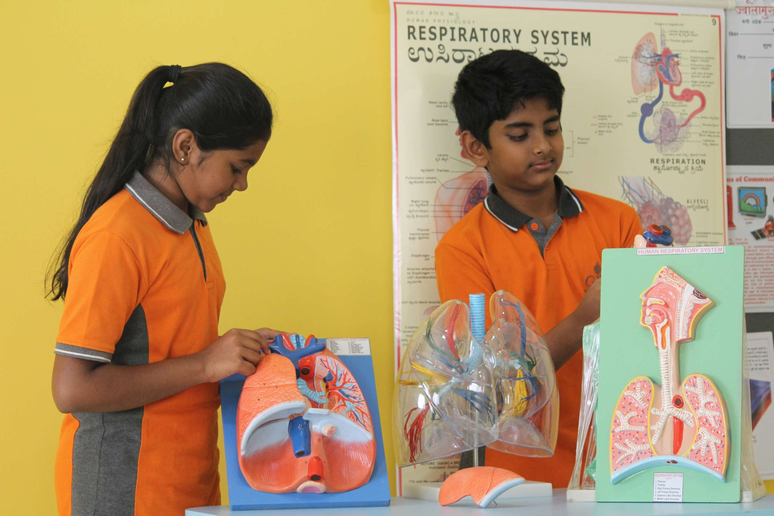 Top 10 international school in Bangalore - Science projects
